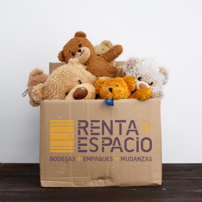 Cajas para almacenar juguetes