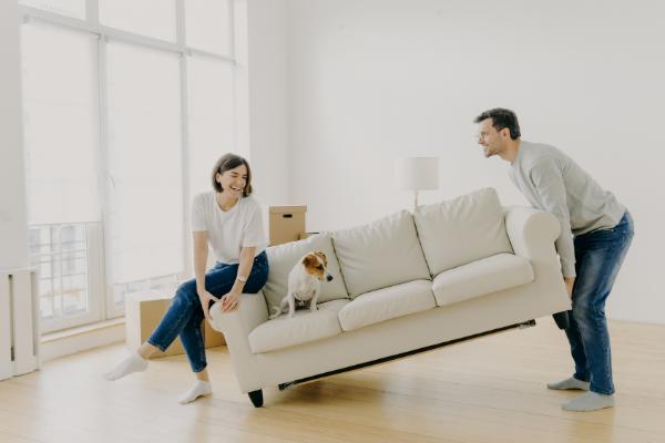 Que muebles se pueden desmontar